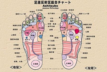 「足裏(ツボ)図」 60個以上あるポイントを一瞬で暗記する!東洋の神秘