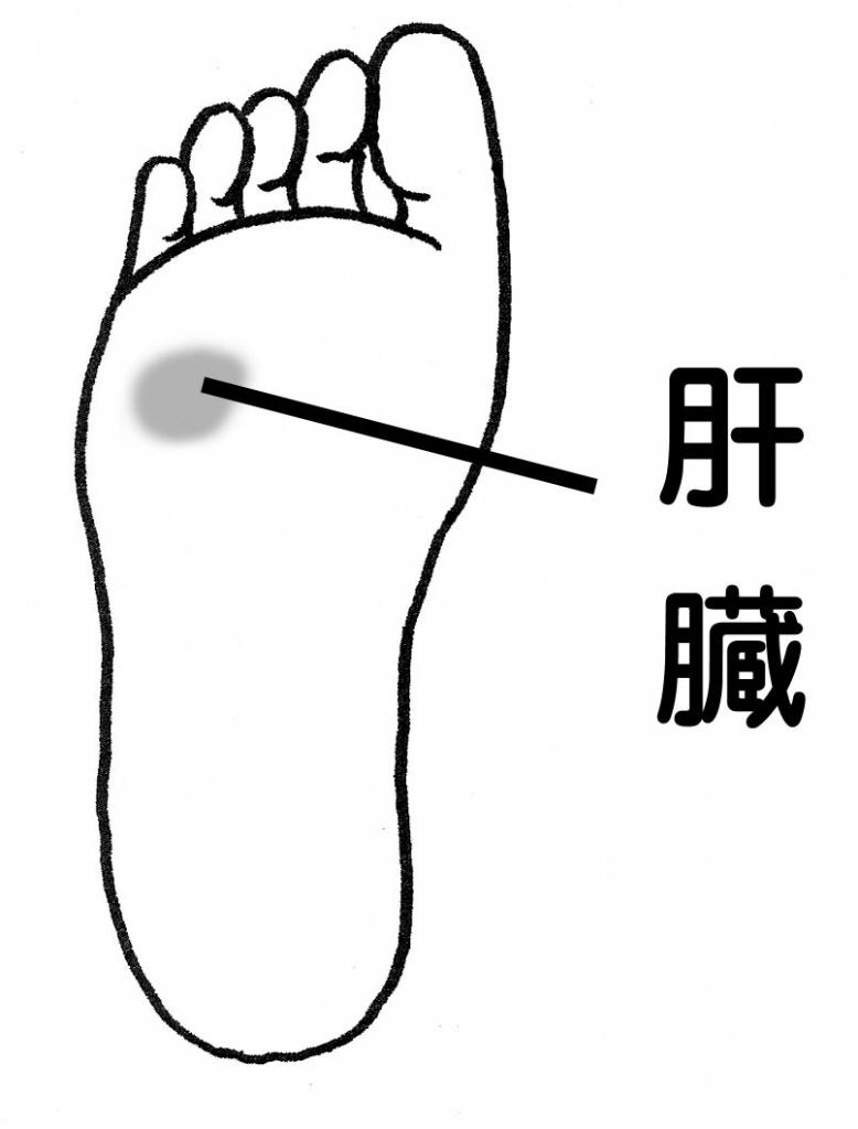 台湾式リフレクソロジーで 「2週間で肝機能の数値改善!?」